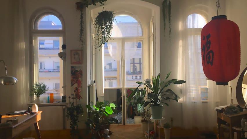 Huge and Sunny Room in the Heart of Kreuzberg