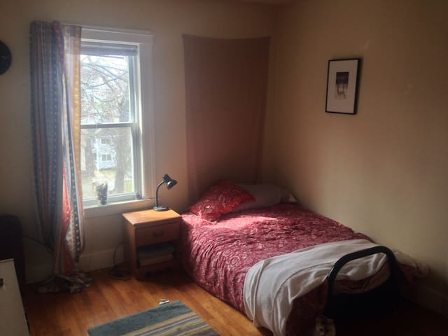 Cozy room in well lit apartment - Worcester - Leilighet