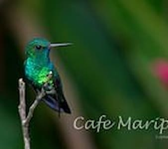 Cafe Mariposa and Mariposa Gardens