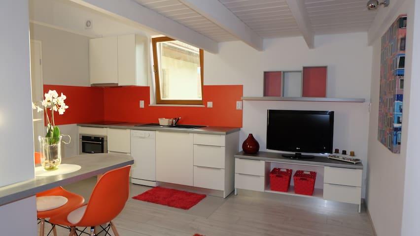 Studio 33m² Indépendant au coeur des Hautes-Alpes - La Roche-des-Arnauds - Apartamento