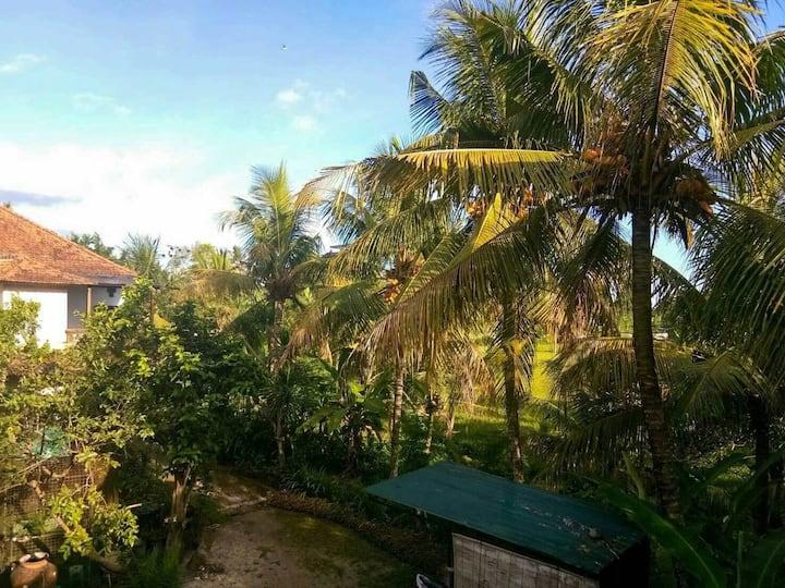 Green vibes rooftop - Pondok Balok