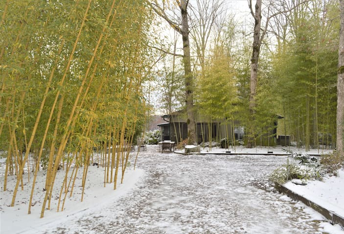 Bamboo Bure