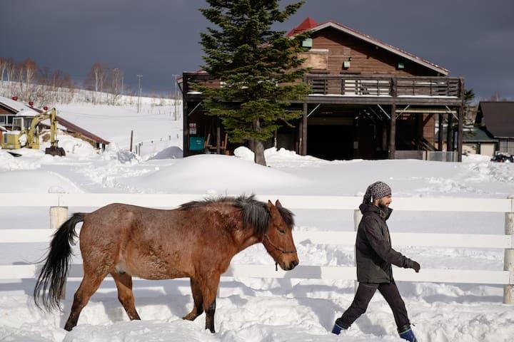 The Barn @ Hopi Hills