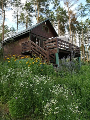 Domek pod lasem Podlasie 400 zł doba