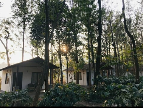 M1 - Cottages Amidst Mudumalai Forest(Food Incl.)