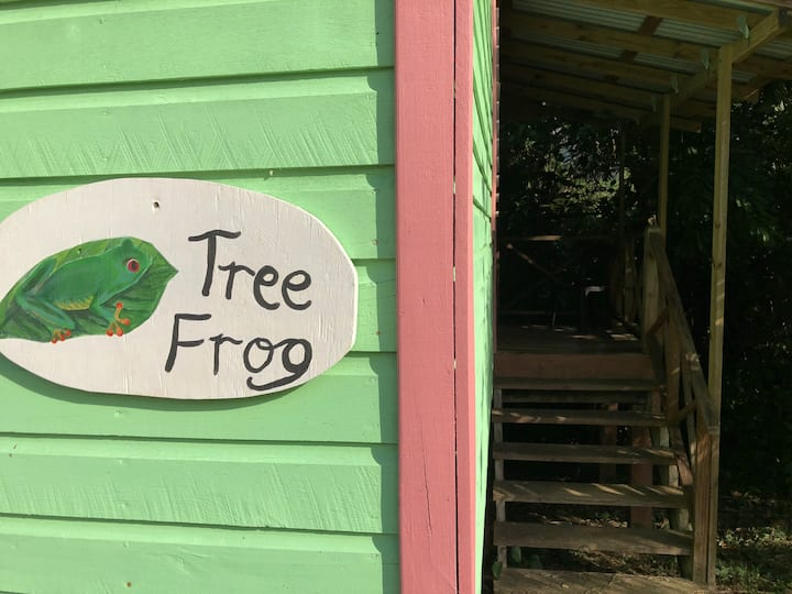Tree Frog Cabin