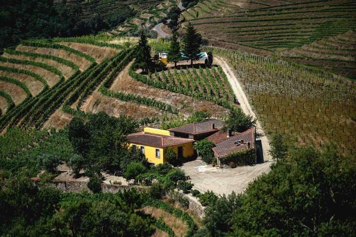 Quinta no topo do Vale Douro, longe de tudo