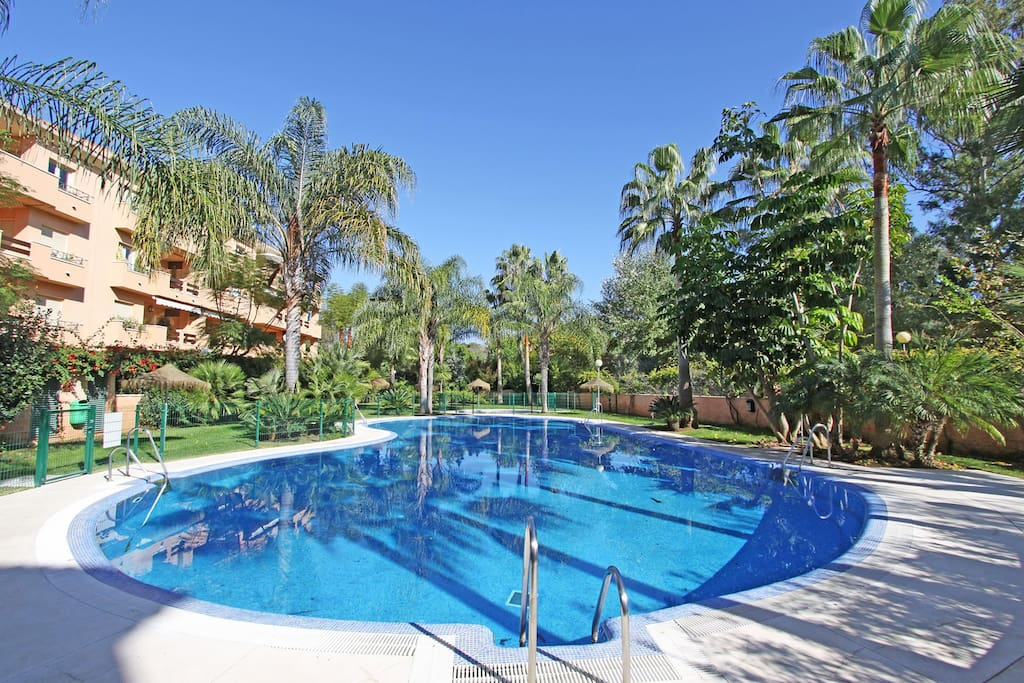 our large pool and chilren pool