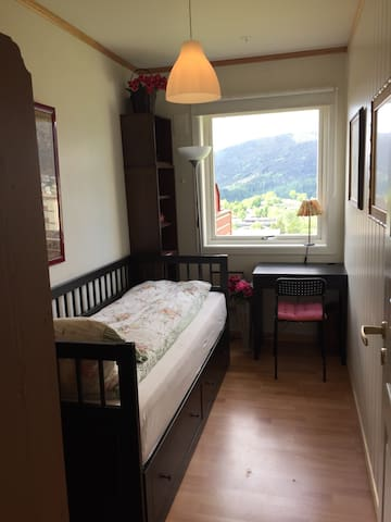 Room in cosy flat close to Bergen