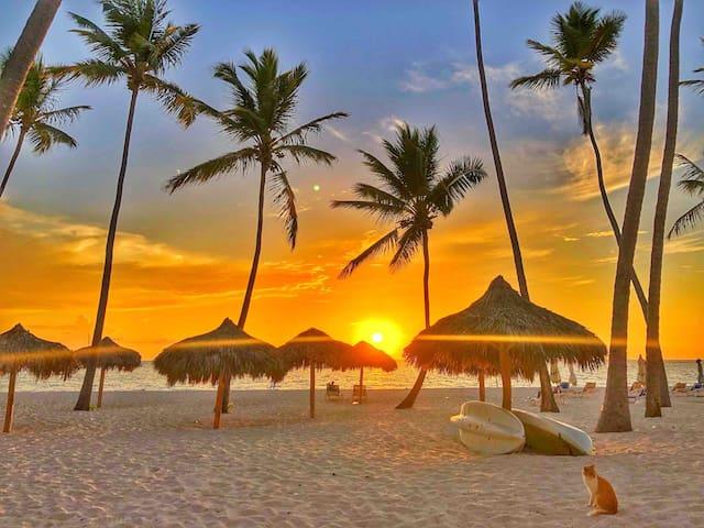 Your beach  Sunrise