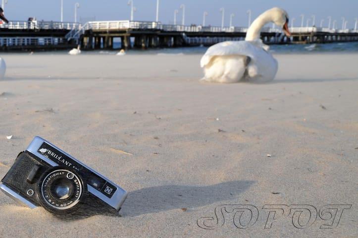 Sopocka Perła Bałtyku / Sopot Baltic Pearl
