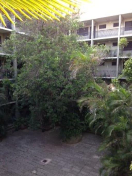 Building's inner courtyard