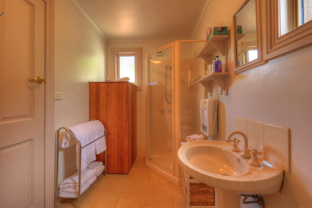 The bathroom.  Towels and toiletries provided.