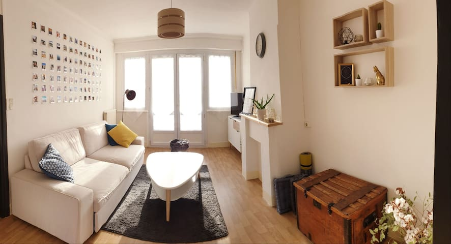 Lumineux appartement lillois
