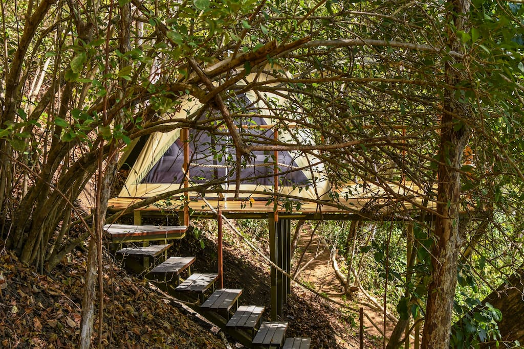 Eco-friendly facilities designed to allow our guests to enjoy nature at its purest form.