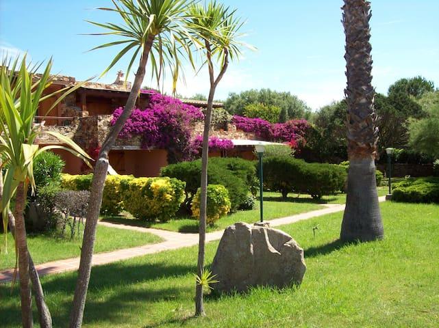 Porto Rotondo bilocale con giardino - Porto Rotondo - Lägenhet