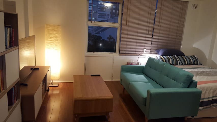 Beautiful Studio @ Potts Point close to everything