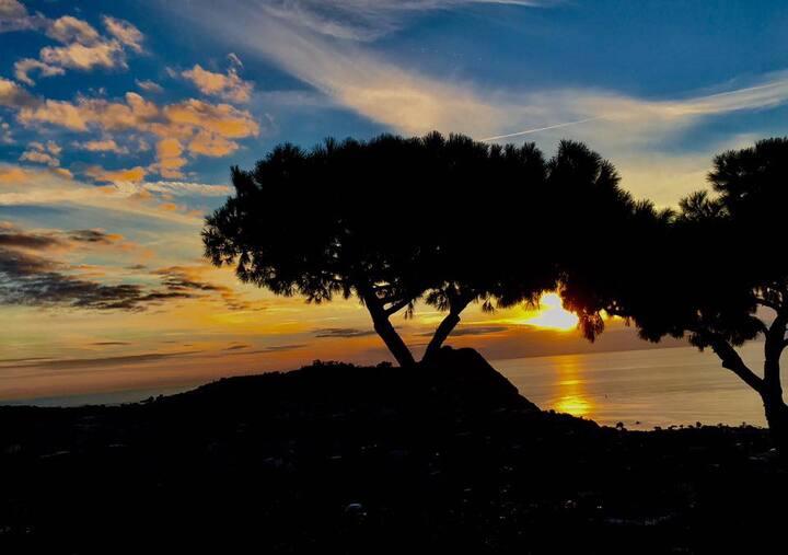 Ischia, Forio - La tua casa in un'oasi di relax