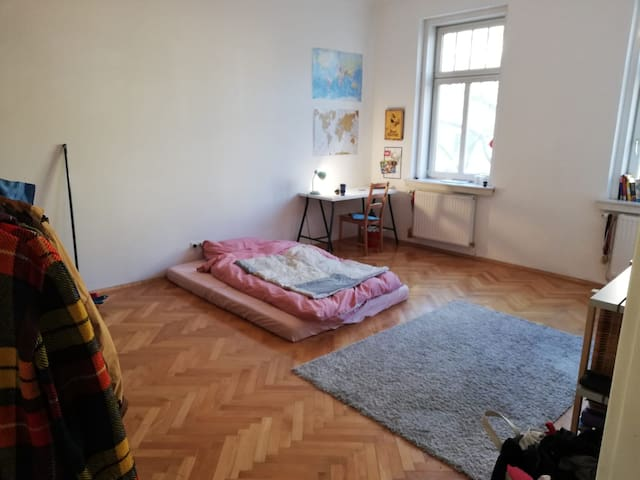24m2 room in a shared flat, very central VIENNA