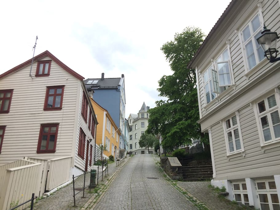 The beautiful street where the apartment is located
