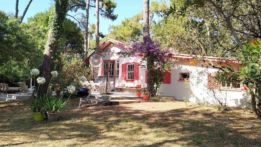 Villa 8pers 44 Ha, La Pointe, Cap-Ferret