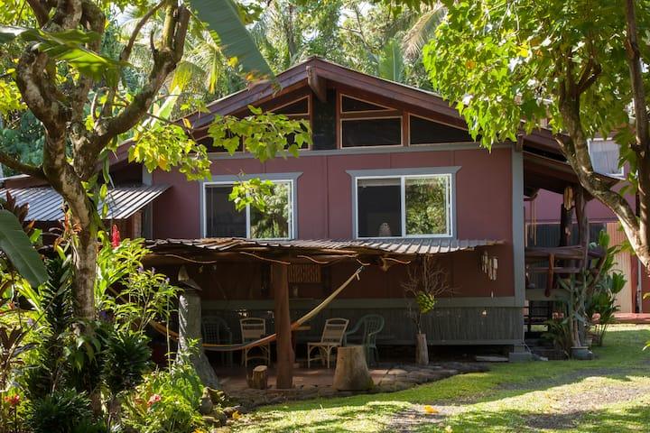 Tropical Tree Homestead near Pahoa, Hawaii