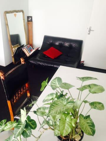 Cozy, eclectic private room in Del Valle Norte - Del Valle Norte - Appartamento