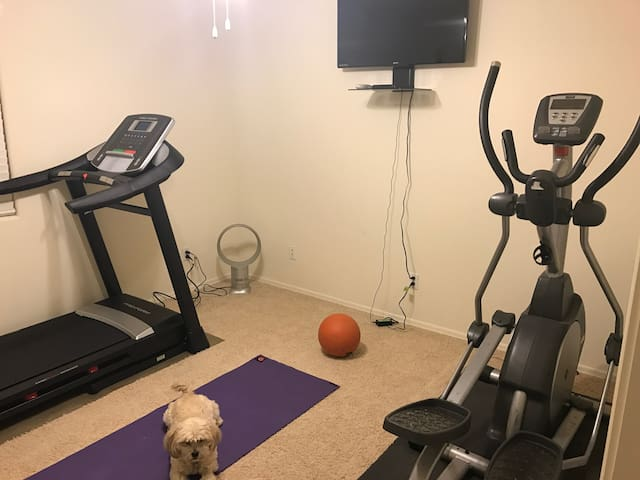Work out room with treadmill, eliptical machine, yoga mat, and small weights.