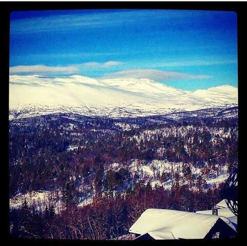Leilighet - Utsikt -  Ski inn/ut Rauland Skisenter - Rauland - Flat