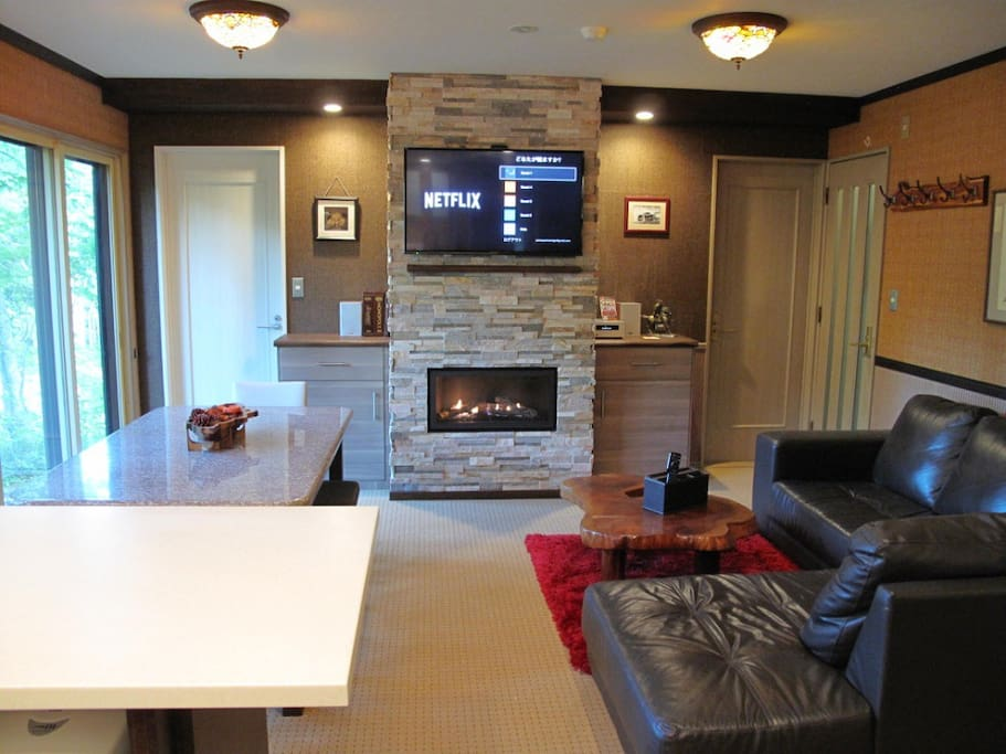 There is a nice Canadian fire place