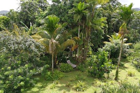 Escapade au cœur de la Martinique