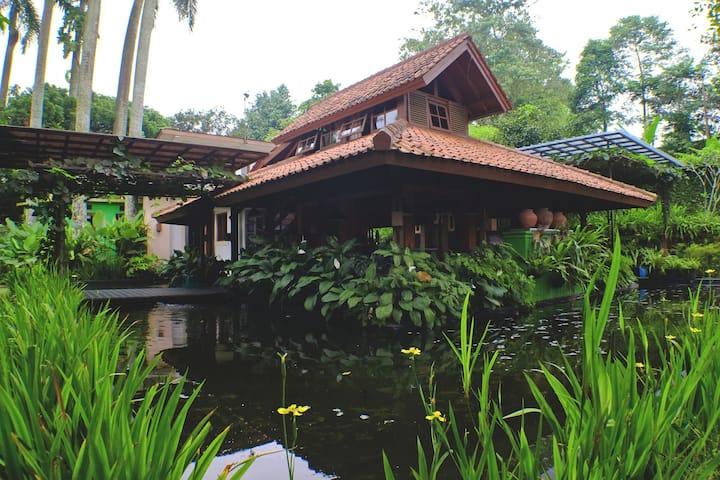 D'Palm Villa - Villa Caringin Bogor by Anton'sHome