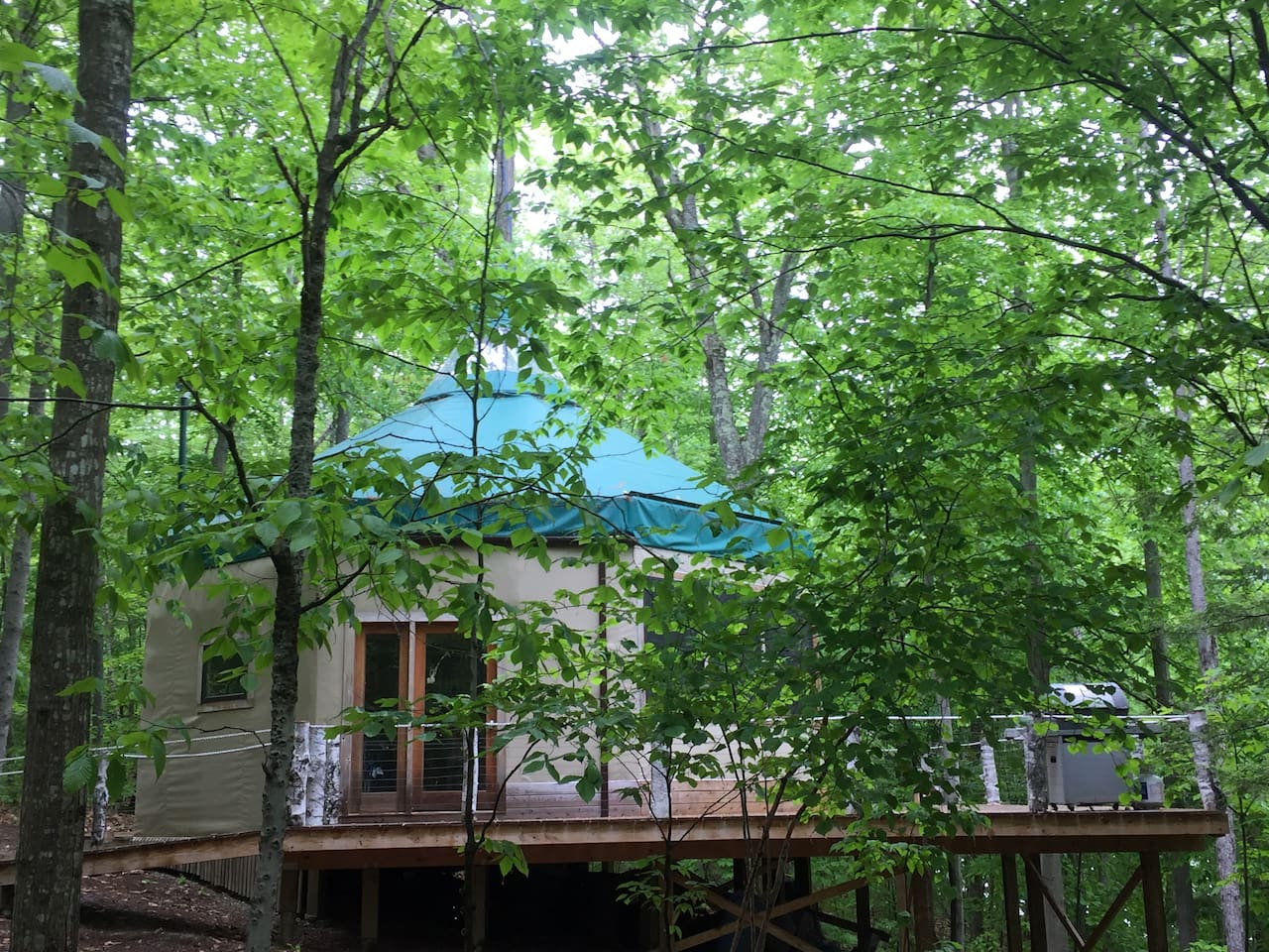 The Oaktagon is nestled in the trees, built around a living oak tree on 1 Big Sustainable Island