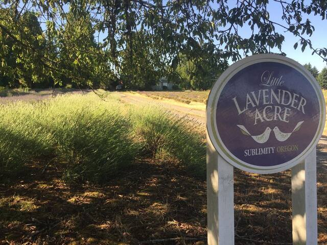 Little Lavender Acre - Historic Farmhouse