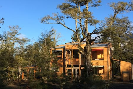 Beautiful home in native chilean forest