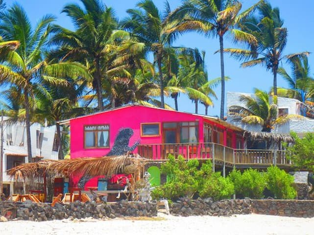 Galapagos House on Beach - Exotic - Puerto Villamil - Dům