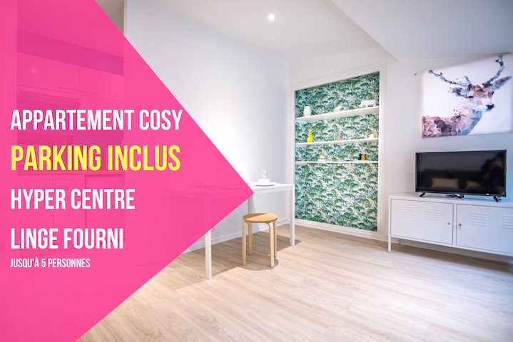 Magnifique appartement tout confort HYPERCENTRE - PARKING INCLUS