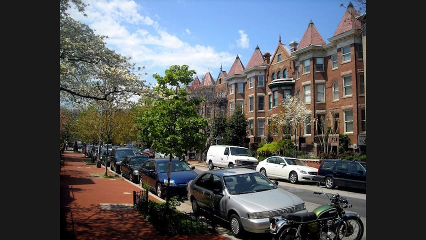Gorgeous 1 bedroom apt in Dupont