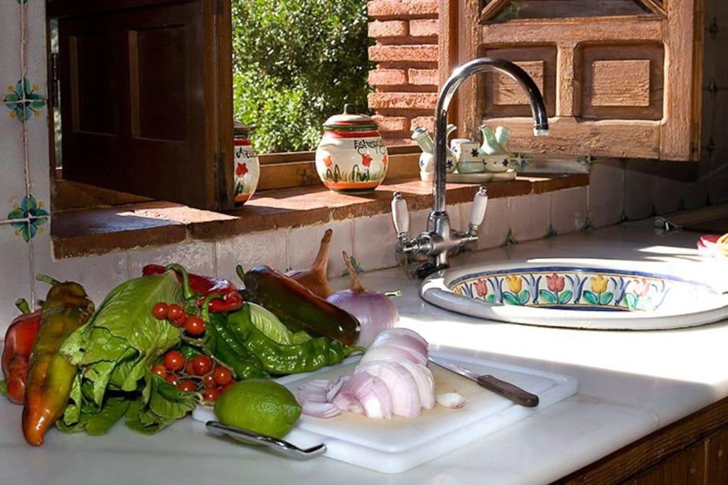 Kitchen house Zoya