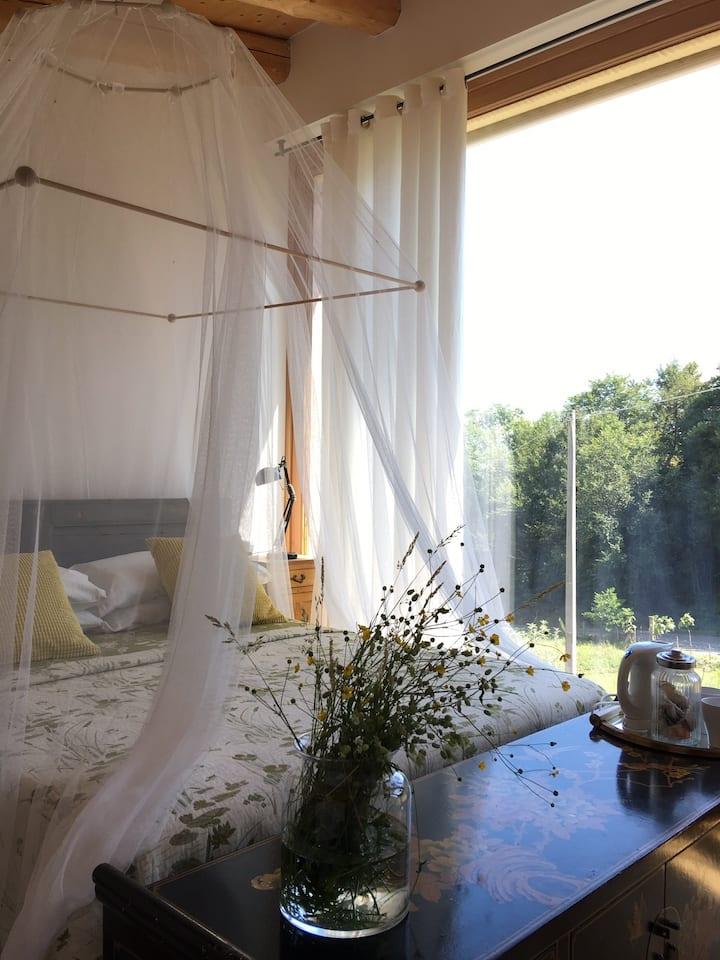 Light , romantic room and sauna