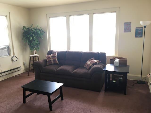 Comfy one bedroom apartment