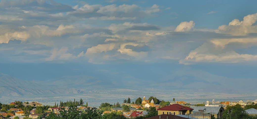 lizi appartment in Telavi