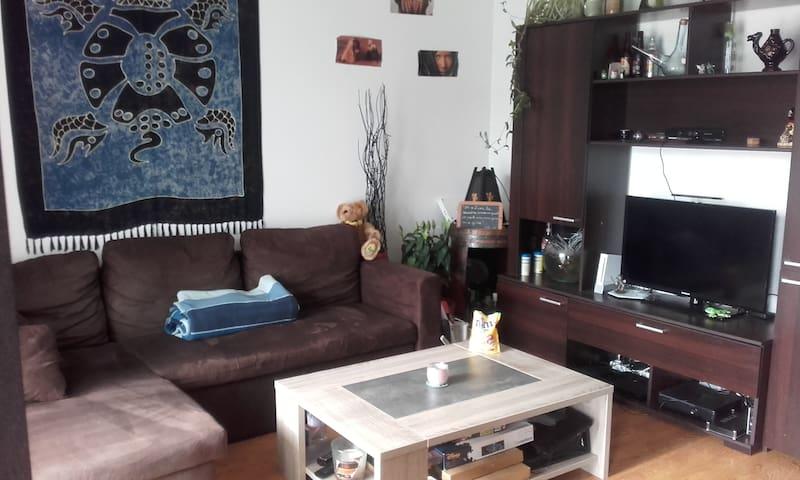 petite chambre chaleureuse, environnement calme - Saint-Sébastien-sur-Loire - Lägenhet