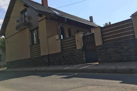 Igényes és egyedi apartman Kaposváron - Kaposvár - House