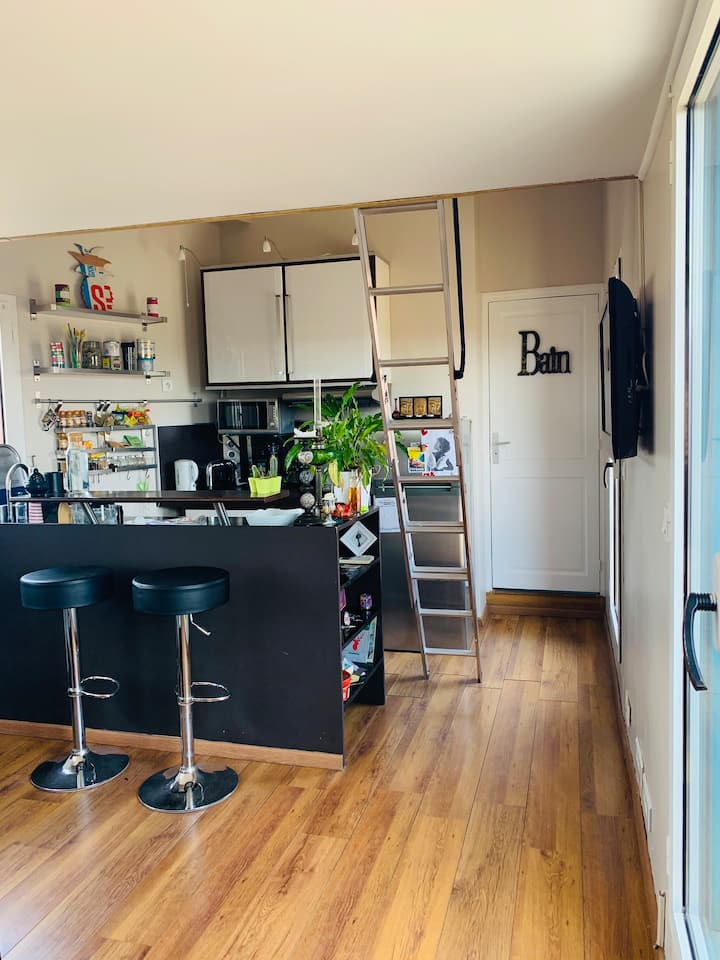 studio climatisé avec mezzanine &grande terrasse