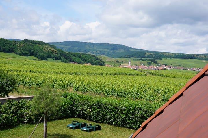 2 pièces sur la route des vins d'Alsace
