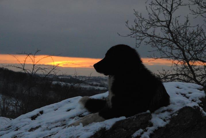 Haila, savourant le coucher du soleil!