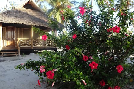 Deluxe Twin Bungalow with Pool or Garden View 2