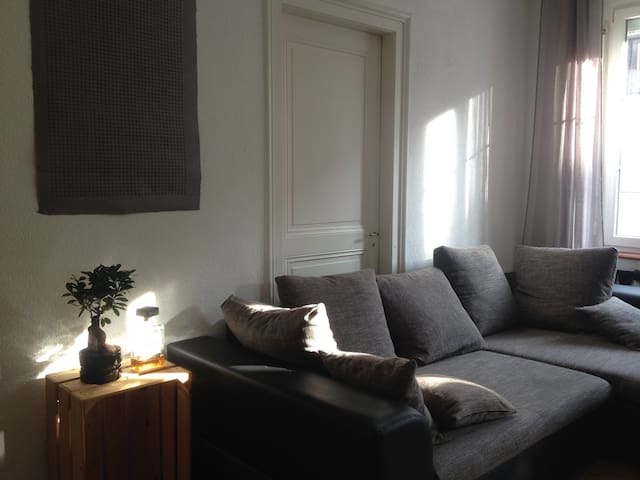 cozy simple room close to main train station - Basel - Lejlighed