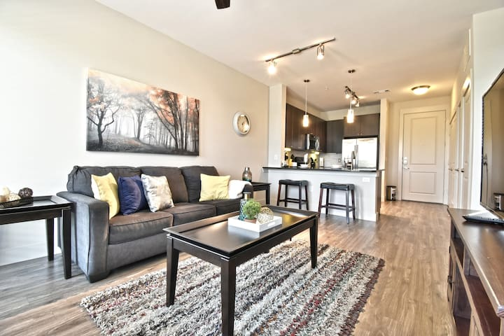 Spacious Downtown Luxurious Condo / Long Term Stay